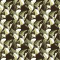Arum Flower Power elitis