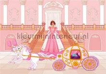 Pink princess and her carriage fotomurali Kleurmijninterieur sport