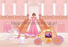 Pink princess and her carriage fototapeten Kleurmijninterieur weltraum