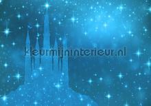 Magic blue castle fotomurali Kleurmijninterieur sport