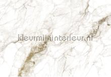 Marble fotomurales Kek Amsterdam PiP studio wallpaper