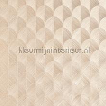 Scale behang Arte Heliodor 49101