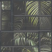 Blik op de botanische tuin papier peint Kleurmijninterieur spécial
