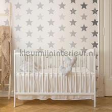Superstar Silver Wallpapier papier peint Noordwand stress