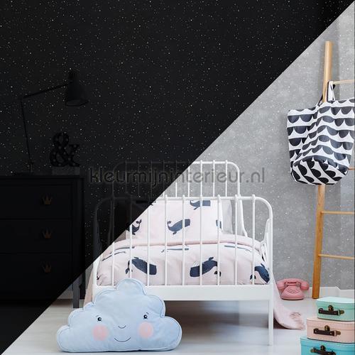 Constellation Grey Glow in the Dark behang 108014 sterren Noordwand