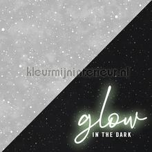 Constellation Grey Glow in the Dark papier peint Noordwand stress