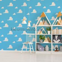 Toy Story Andy Room tapet Noordwand Wallpaper creations