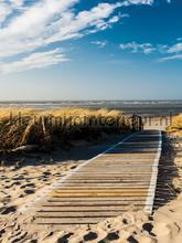 Walk through the dunes fotomurais Kleurmijninterieur Todas-as-imagens