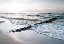Sea fotomurais Kleurmijninterieur Todas-as-imagens