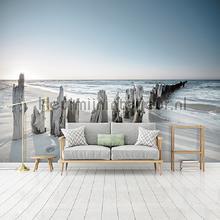 Sea wood fotomurais Kleurmijninterieur Todas-as-imagens