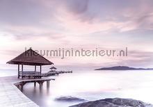 Pier in purple pastel colors fotomurais Kleurmijninterieur Todas-as-imagens