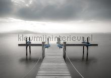 Pier in grey colors fotomurais Kleurmijninterieur Todas-as-imagens