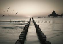 Rising sun in the sea fotomurais Kleurmijninterieur Todas-as-imagens