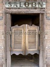 Salloon doors papier murales Kleurmijninterieur structures
