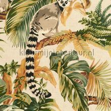 Lemuri tapet Hookedonwalls alle billeder