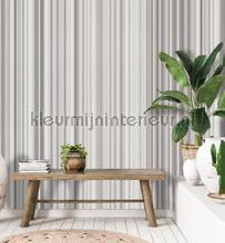 108657 behang Behang Expresse Modern Abstract