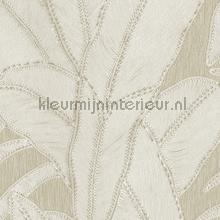 Botanic bone papel pintado Arte Vendimia Viejo