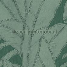 Botanic pine tapeten Arte Trendy