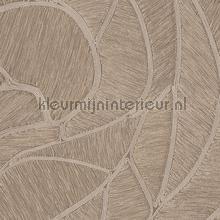 Spiral taupe papel pintado Arte Vendimia Viejo