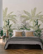 Olea wallcovering Casamance wallpaper Top 15
