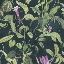 Fantastic flora papel de parede AS Creation Vendimia Velhos