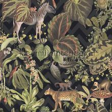 Jungle joy carta da parati AS Creation Wallpaper creations