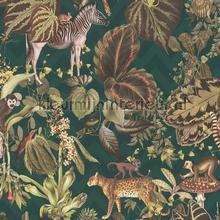 Jungle joy papier peint AS Creation spécial