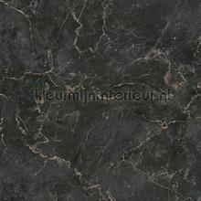 Monumental marble papier peint AS Creation spécial