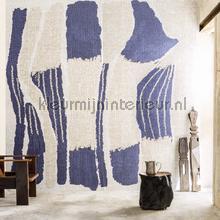 La casa Azul papier murales Elitis tout images