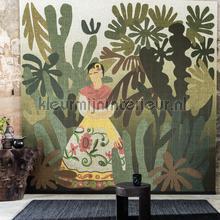 La passion de Diego papier murales Elitis tout images
