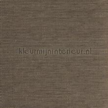 Fijn weefsel goud-zilver daad grijsbruin tapet Eijffinger Natural Wallcoverings 322651