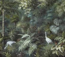 Jungle bos met kraanvogels fototapet Eijffinger alle billeder