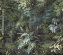 Jungle bos fototapet Eijffinger alle billeder