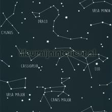 Constellations tapet Caselio Wallpaper creations