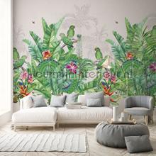 Groene exotische vogels fotobehang Behang Expresse Bloemen Planten