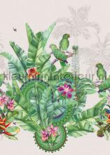 Groene exotische vogels fototapet Behang Expresse alle billeder