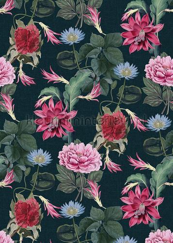 Exotische bloemen op diepblauwe achtergrond fototapeten TD4105 Blumen - Pflanzen Behang Expresse