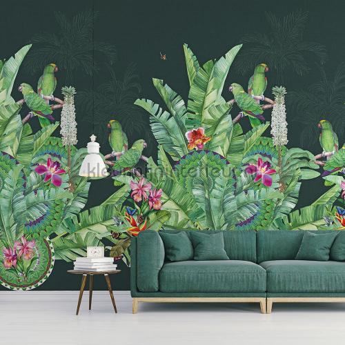 Groene exotische vogels op donkere achtergrond fototapeten TD4110 Blumen - Pflanzen Behang Expresse