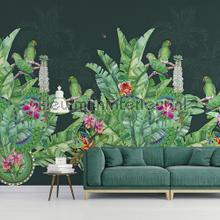 108725 fotobehang Behang Expresse Bloemen Planten