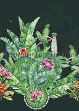 Groene exotische vogels op donkere achtergrond fotobehang Behang Expresse Bloemen Planten