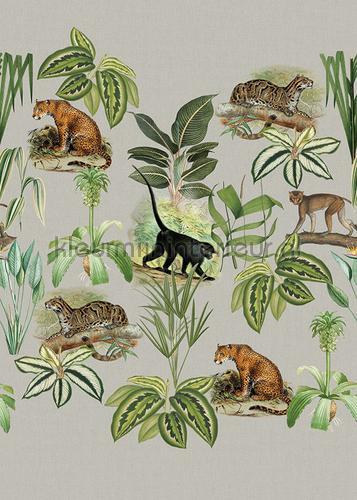 Jungle dieren fotomurali TD4114 select.d Behang Expresse