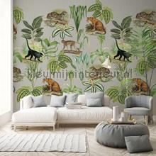 Jungle dieren fotobehang Behang Expresse jungle