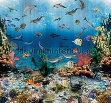 Aquarium carta da parati Behang Expresse Sofie en Junar INK7666