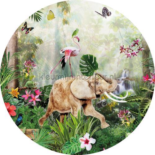 Jungle dance cirkel 75cm stickers mureaux INK324 Bébé - Enfant Behang Expresse
