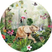 Jungle dance cirkel 150cm wallstickers Behang Expresse alle billeder