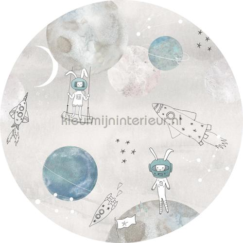 Too the moooon grey cirkel 100cm adesivi murali INK346 Bambini Behang Expresse