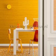 Kosa silk papel de parede VP 928 52 cores lisas Elitis
