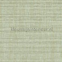 Nila behang Elitis Soie changeante VP-929-40