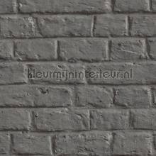 KMI203 papel de parede Kleurmijninterieur quadrado