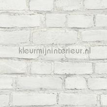 KMI205 papel de parede Kleurmijninterieur quadrado